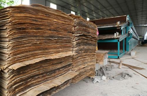 橡木单板干燥机